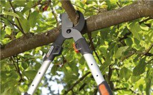 Tijera Telescópica Gardena 650BT,un corte fácil a una sola distancia